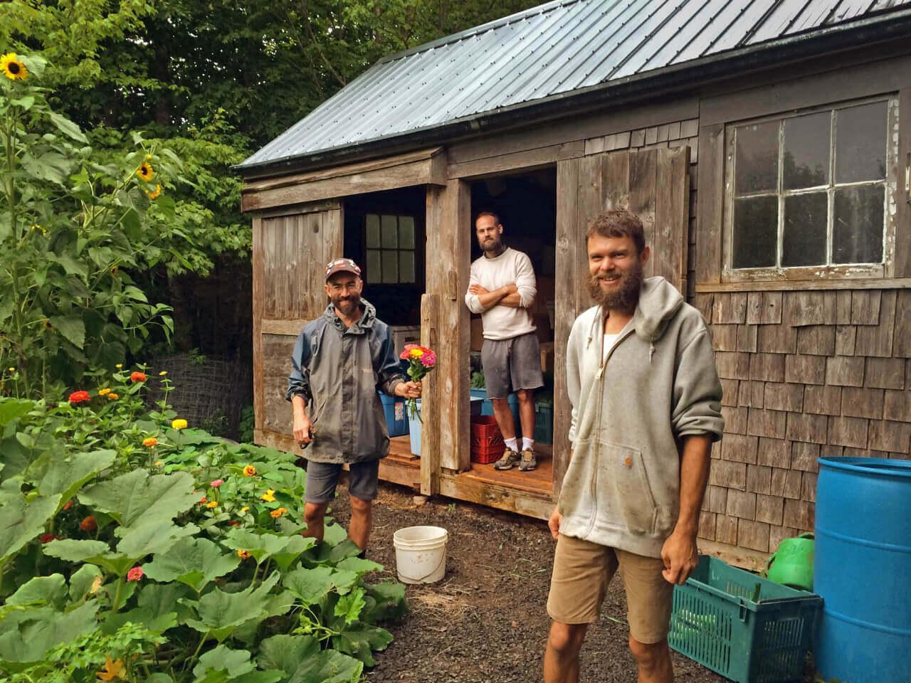 We prepare for market in the garden